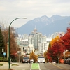 Autumnal Vancouver From Yucon Street