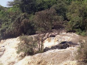Awash Park Safari Trip Photos