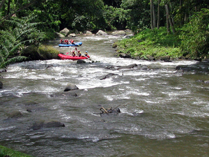 Ayung River Whitewater Rafting Photos
