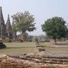 Ayutthaya Ancient Ruins Complex