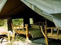 3 Days Masai Mara Budget Camping