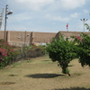 Another View Of Bahu Fort From The Garden