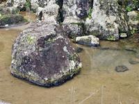 Ichijōdani Asakura Family Historic Ruins