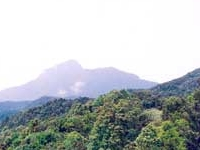 Bach Ma Mountain