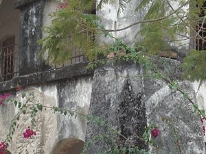 Dar es Salaam and Bagamoyo Excursion - 2 Days Photos