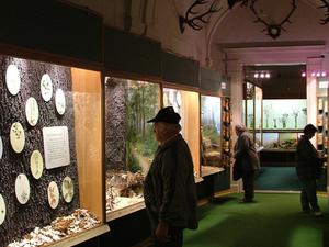 Bakony Natural History Museum