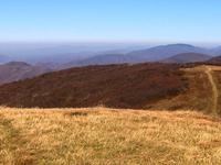 Bald Mountains