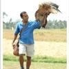 Bali Bird Park - View