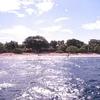 Balicasag Island Coastline - Panglao