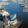 Baltimore Harbor View