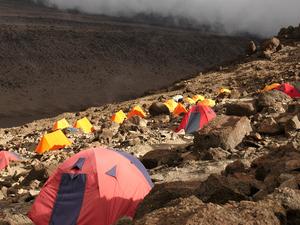 Lemosho Route - 9 Day Kilimanjaro Climb Photos