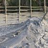 Baratang Mud Volcano
