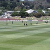 Basin Reserve Firebirds Verse Stags