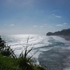 Beach View From Lion Rock @ Piha - Auckland NZ