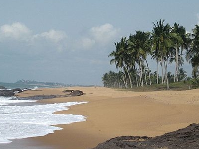 Beach With Palms In Ghana