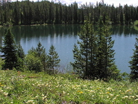 Bearpaw Lake Trail