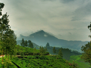 7 Days Kerala Tourism Packages- From Rs 9,499/-- Photos