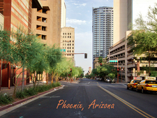 Beautiful Phoenix
