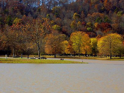 Beech Fork Lake