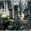 Bel Air Cemetery