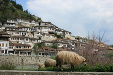 Berat Travel Albania