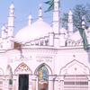Bhujakhiapir