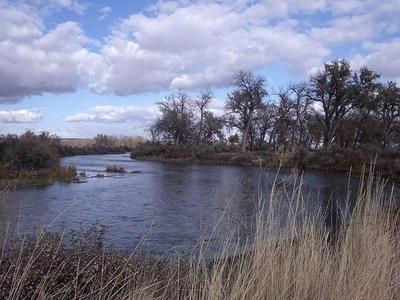 Bighorn River In Montana
