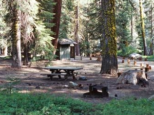 Billy Creek Upper Campground