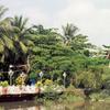 Binh Quoi Tourist Village
