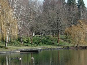 Blue Lake Regional Park