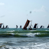 Boats Near Negombo Beach
