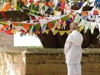 Bodhi Tree Temple-Anuradhapura
