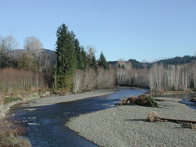 Bogachiel River