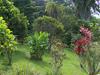 Bogota Botanical Garden