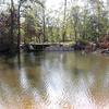 Bogue Falaya Louisiana