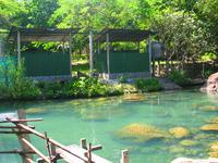 Bo Khlueng Hot Stream