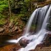 B. Reynolds Falls