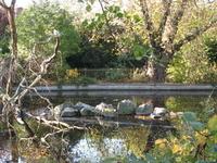 Brookmill Park