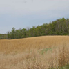 Brushy Creek State Recreation Area