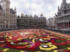 Brussels Floral Carpet