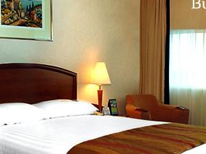 Mandakini Hotels