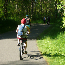 Burke Spring Trail 35