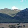 Burrowa-Pine Mountain National Park