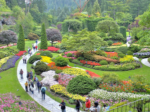 Butchart Gardens Holiday Lights Tour Photos