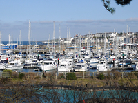 Bangor Marina