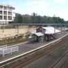 Bardwell Park Railway Station