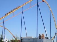 Behemoth Roller Coaster