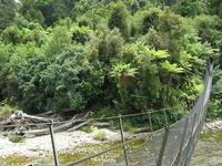 Gunner River