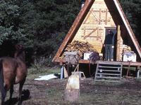 Cabin Creek Patrol Cabin