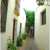 Calleja Del Panuelo - Cordoba